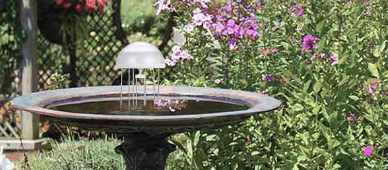 Bird Bath Accessories