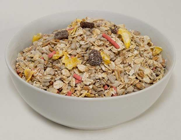Bowl Of Bird Food