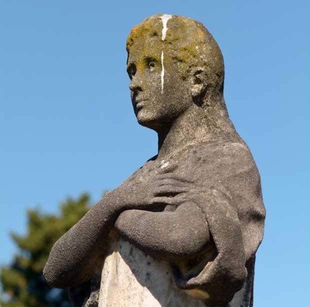 Bird Poo On Statue