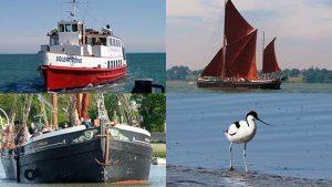 Bird Watching Cruises