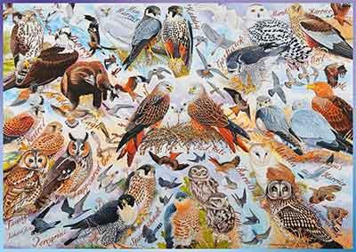 Birds Of Prey Jigsaw Puzzle