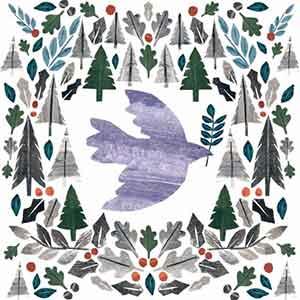 Dove Flight RSPB Christmas Cards