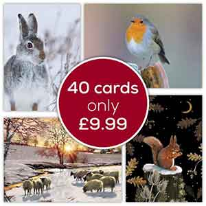 Fab Forty RSPB Christmas Cards