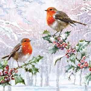 Holly Robins RSPB Christmas Cards