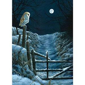 RSPB Moonlit Path Christmas Cards