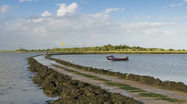 Northey Island