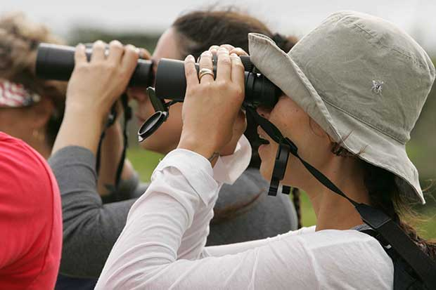 People Using Binoculars