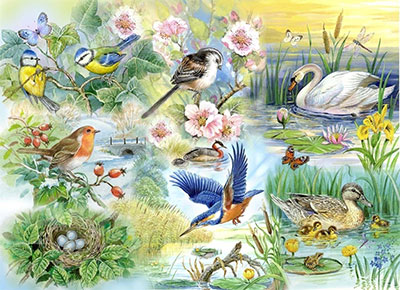 Wild Birds And Ducks Jigsaw Puzzle