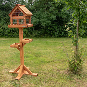 Bird Table With Cage