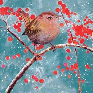 RSPB Berry Christmas Cards