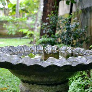 Bird Bath In A Garden