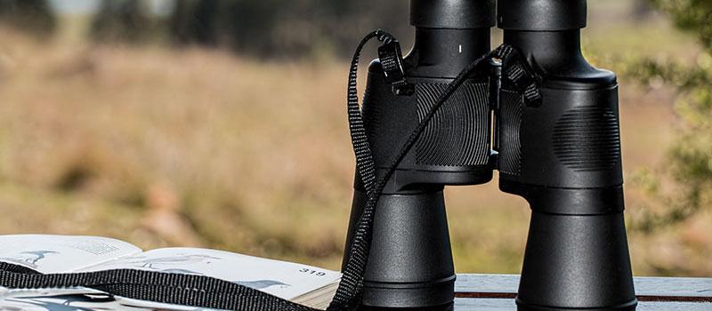 Bird Watching Binoculars