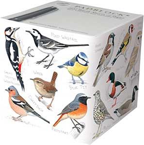British Birds Padblock