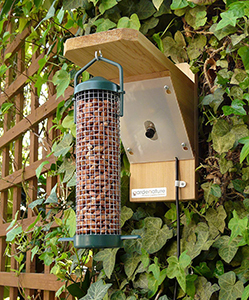 Nest Box Camera And Feeder Kit