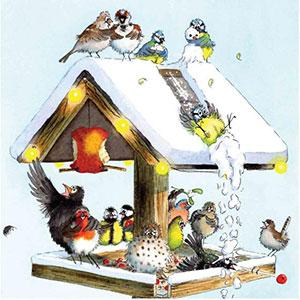 RSPB Christmas Table Christmas Cards
