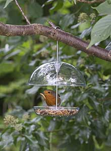 Dome Bird Feeder