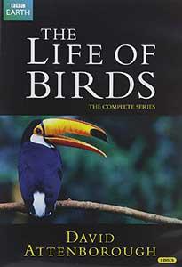 The Life Of Birds DVD