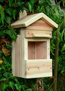 Multi Species Nest Box/Feeder And Camera
