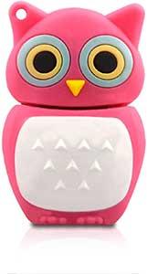 Owl USB Stick