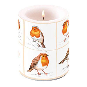 Robin Candle