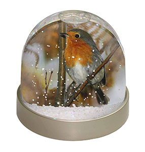 Robin Redbreast Snow Globe