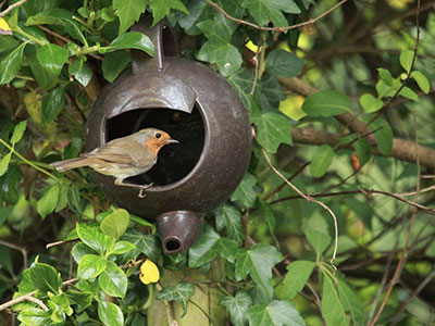 Robin Teapot Nester