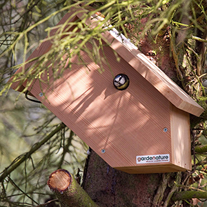Side View Camera Nest Box
