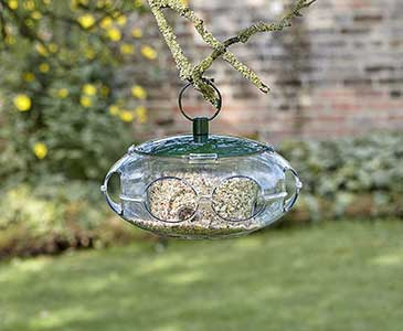 Small Bird Feeder