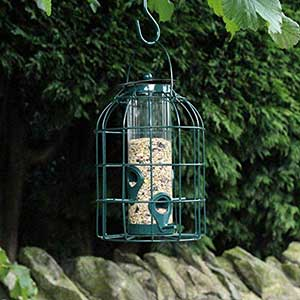 Squirrel Guard Bird Feeder