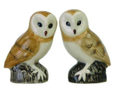 Barn Owl Salt And Pepper Pots