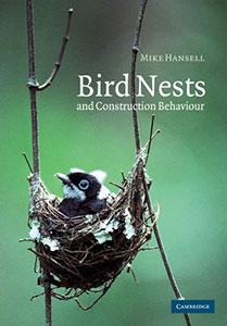 Bird Nests And Construction Behaviour