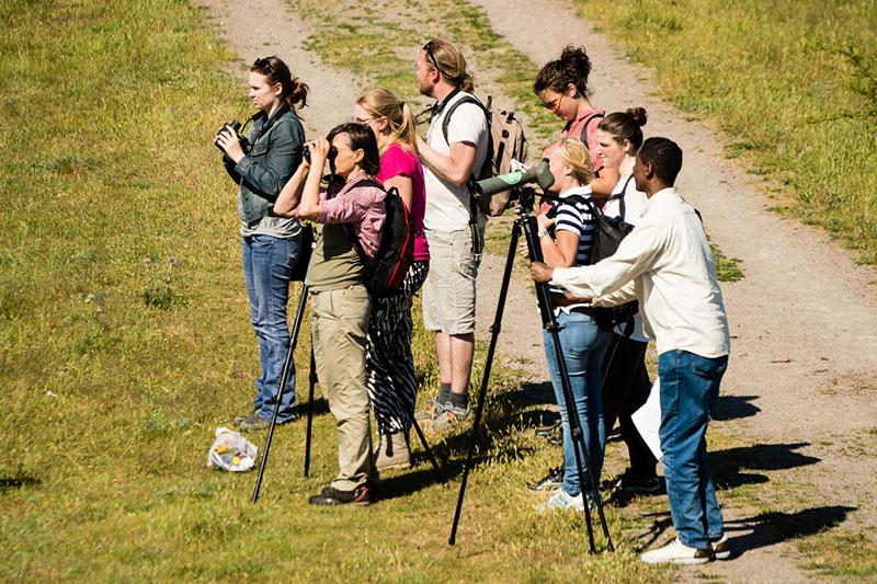 A Group Of Bird Watchers