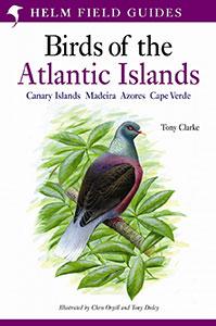 Birds Of The Atlantic Islands