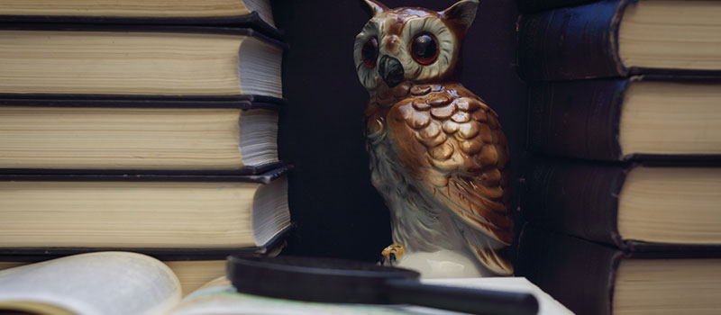Books With Owl Ornament