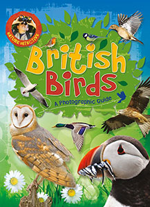 British Birds (Nature Detective)