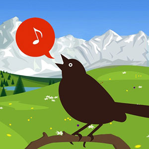 Chirp! Bird Songs & Calls Of Britain and Europe