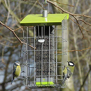 Geohause Bird Feeder
