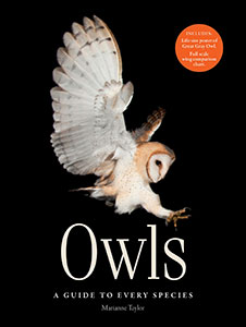 owl-guide-species