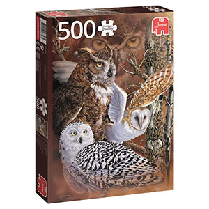 Find The Owls Jigsaw Puzzle