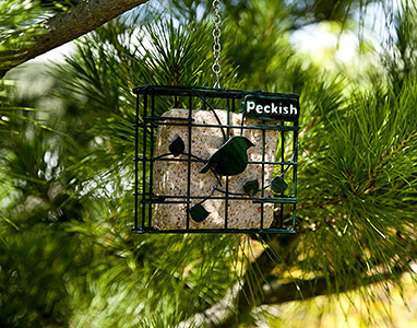 Suet Cake Block for Wild Birds