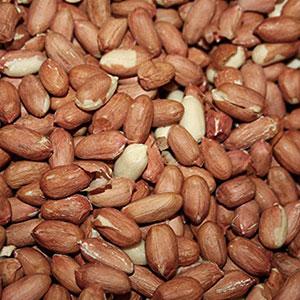 Premium Peanuts
