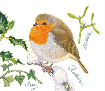 Robin Paper Napkins