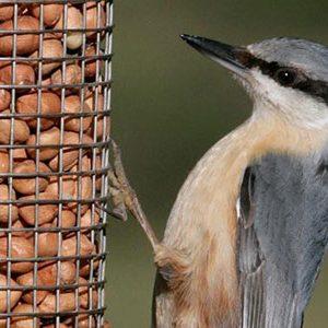 RSPB Bird Food
