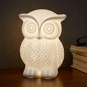 RSPB Owl Night Light