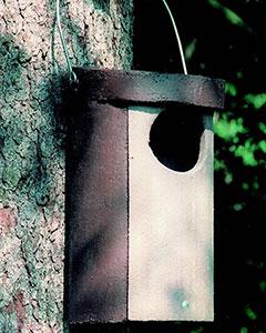 Schwegler Owl Box