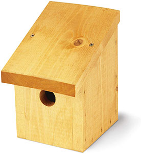 Tom Chambers Snoozy Bird Box