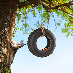 Swing Tyre Bird Feeder