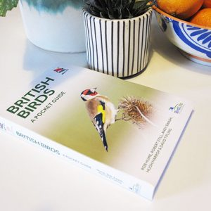 British Birds Pocket Guide