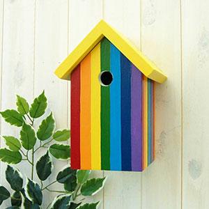 Rainbow Bird Box