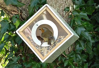 Urban Bird Feeder